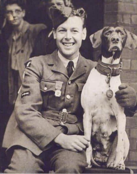 Judy: World War II Hero