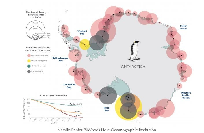 Emperor Penguin's at Risk. Are We?